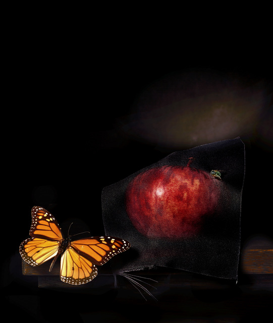 , 'Still life with apple and green fly,,' 2014, .M Contemporary Sydney