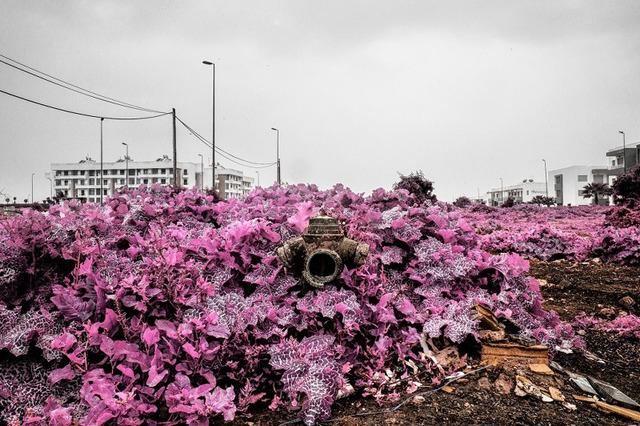 , 'Untitled (Annexes Series),' 2018, CuratorLove