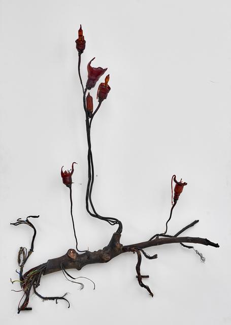 , 'Postnaturalia - Bulby,' 2018, Galerie Ron Mandos