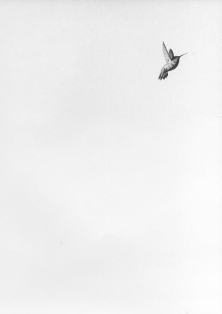 , 'Untitled (Colibri II),' 2017, Monica De Cardenas