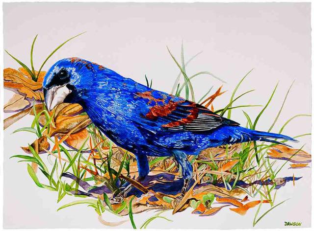 , 'Prowling Blue Grosbeak,' 2018, Wally Workman Gallery