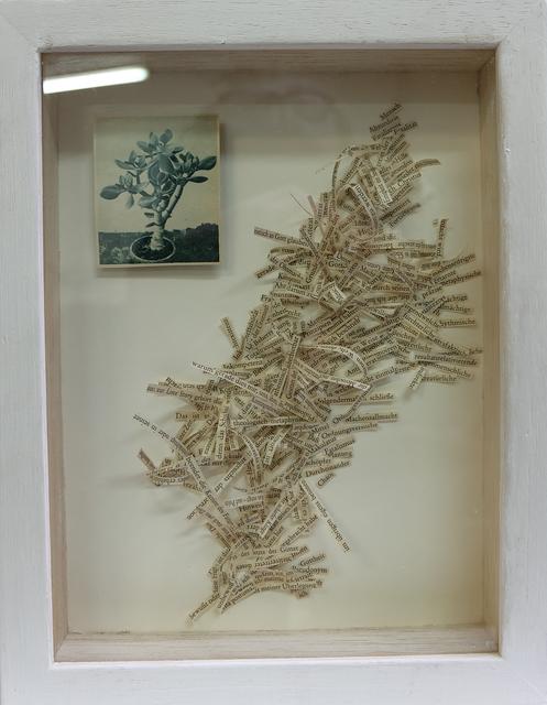 """, '""""Machensallmacht"""" - Metaphase Chromosom und ein Einspalter in Holzbox,' 2016, Galerie Brigitte Schenk"""