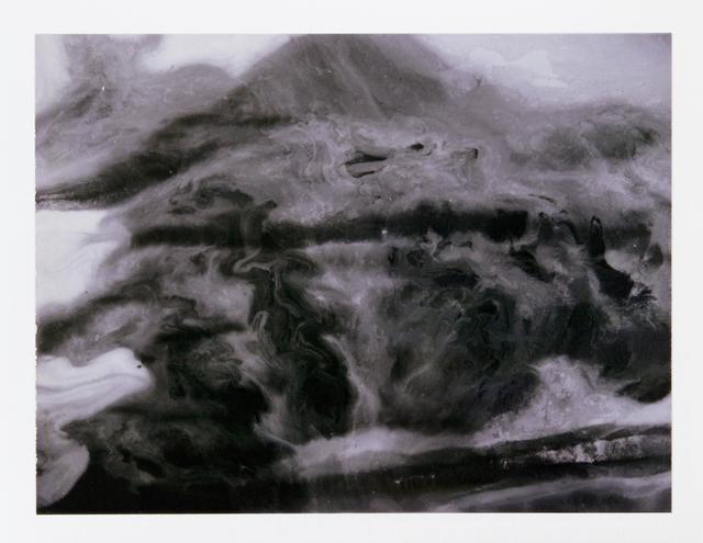, 'Polaroid #16,' 2013, Collezione Maramotti