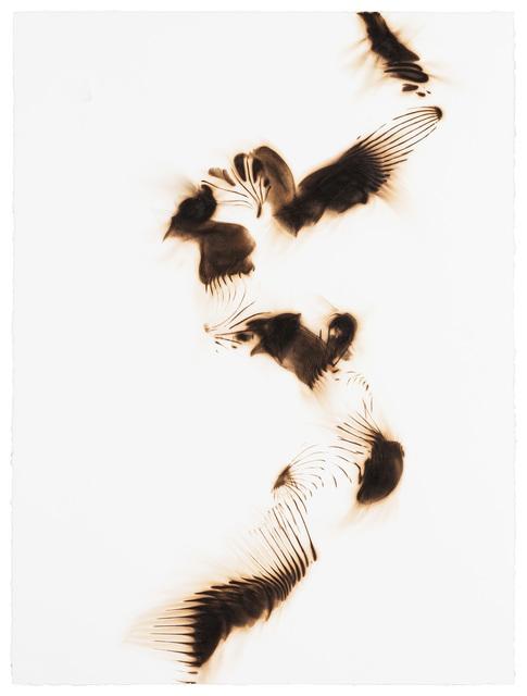 , 'Trace 0814,' 2014, Winston Wächter Fine Art