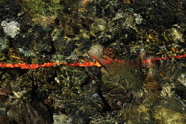 , 'Line of Clarity,' 2016, Abbozzo Gallery
