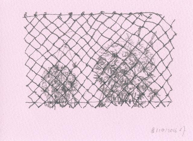 , 'Hiding Grass Balls,' 2016, GALERIE OVO
