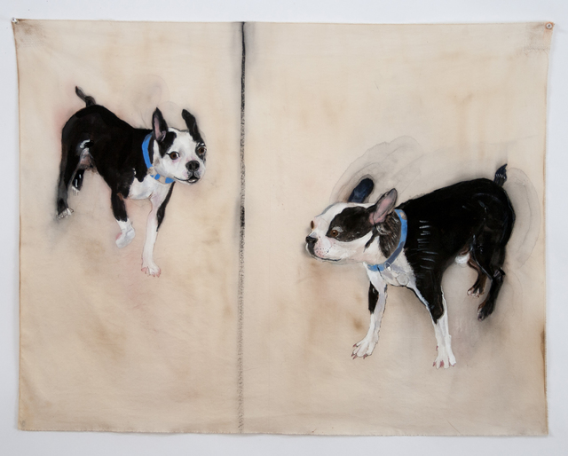 , 'BOSTON TERRIER,' 2014, Greg Kucera Gallery