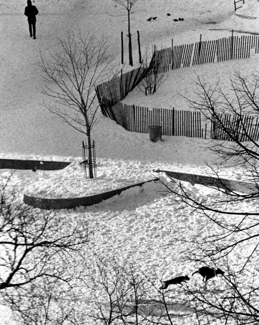 , 'New York (Two Dogs Running in the Snow),' , Holden Luntz Gallery