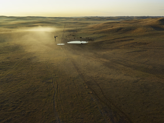 , 'First Light, Cherry County, Nebraska,' 2013, Yancey Richardson Gallery