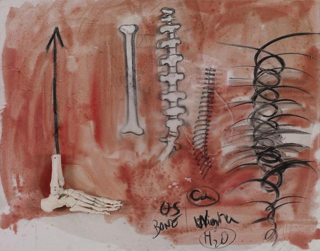, 'Bone,' 2014, Galerie Nathalie Obadia