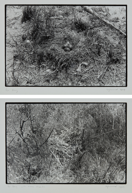 Zoe Leonard, 'Two works: (i) Nest no. 1; (ii) Nest', (i-ii) 1997, Phillips