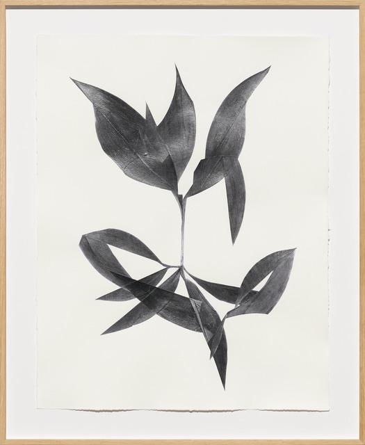 , 'Pavillon ,' 2018, Galerie Lisa Kandlhofer