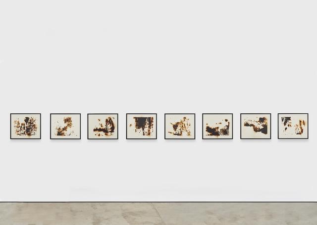 , 'Burned Landscape (America) 3,' 2017, Lehmann Maupin