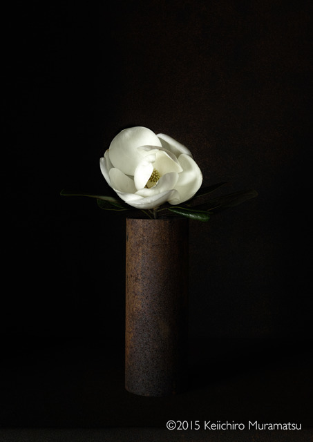 , 'A Stage Southern Magnolia 3-6,' 2015, Galerie Marie-Robin