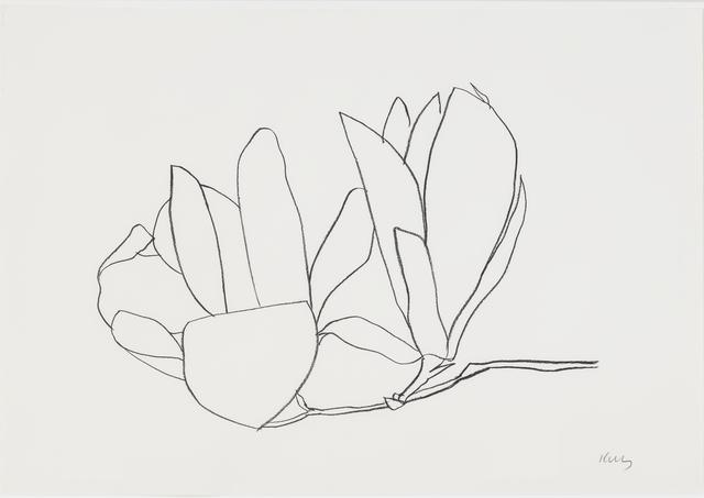 , 'Magnolia,' 1966, Susan Sheehan Gallery