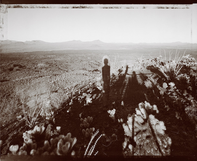 , 'Self portrait with Saguaro about my same age, Pinacate Sonora 10/29/99,' 1999, Light Work