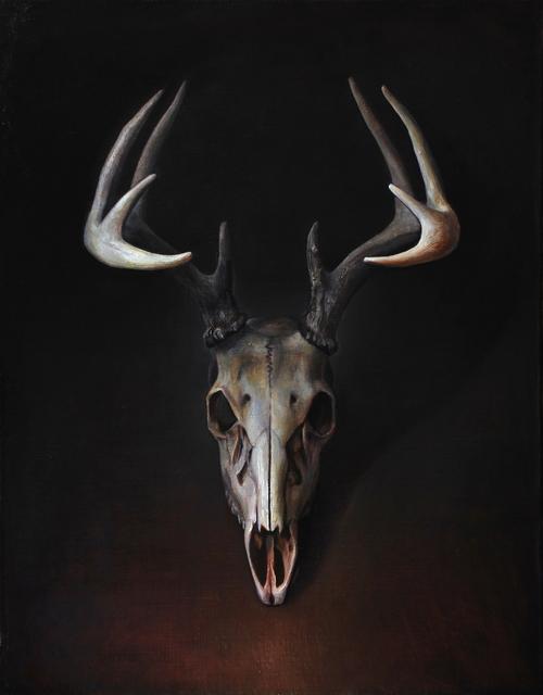 , 'Buck Skull,' , Booth Gallery