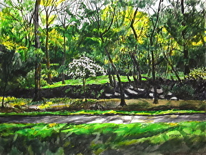 , 'Rock Creek Park with Dogwood Tree,' , Zenith Gallery