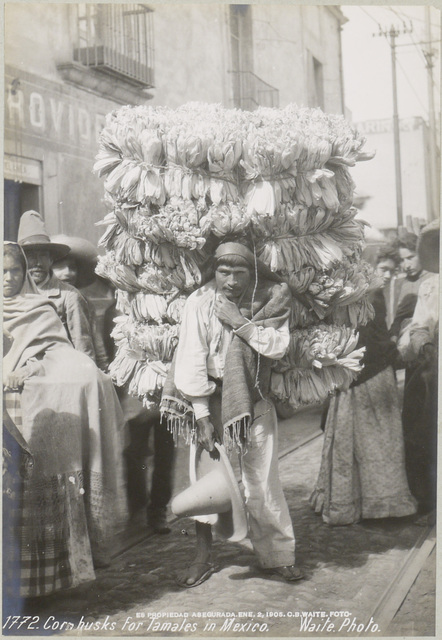 , 'Corn Husks for Tamales,' 1906, SERGE PLANTUREUX