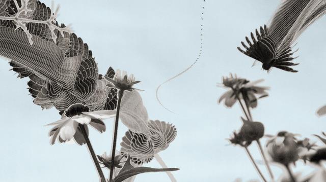 , 'Cloudyspot,' , Diehl Gallery
