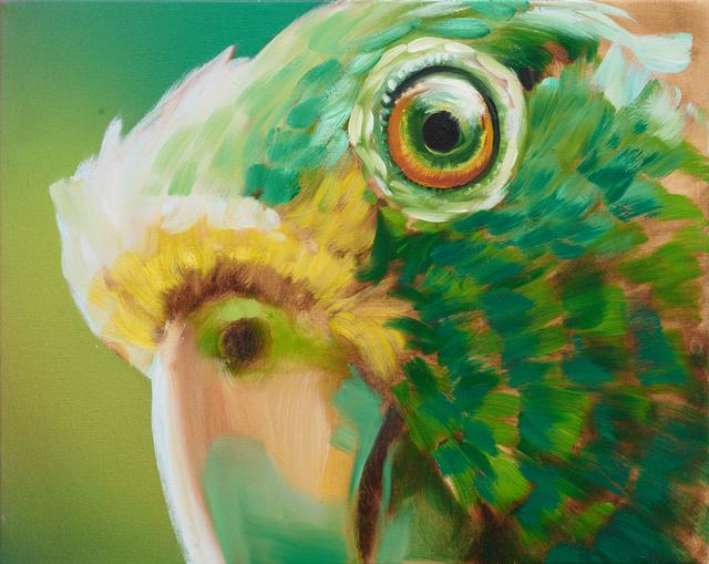 , 'Parrot,' 2015, Rosamund Felsen Gallery