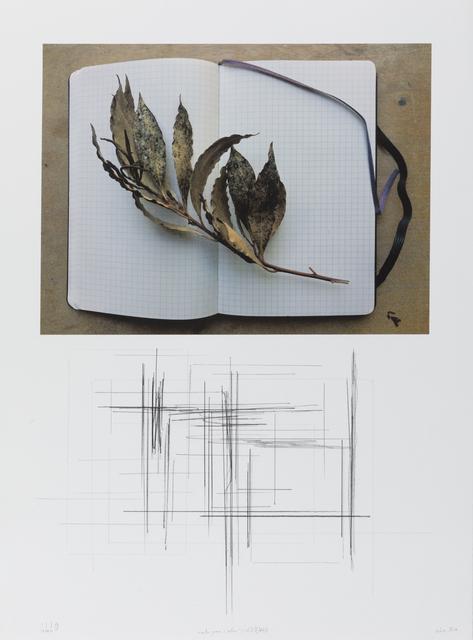 """, '""""notas para o outono"""" (col. I/V) #7/8,' 2018, Galeria Miguel Nabinho"""
