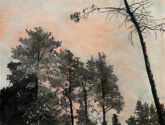 Sebastian Nebe, 'Pinewood', 2018, Galerie Kleindienst