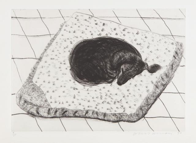 David Hockney, 'Dog Etching No. 15, from Dog Wall', 1998, Phillips
