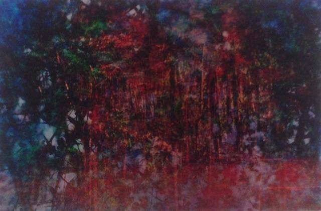 , 'NyxzuPferd,Sweden,' 2012, Gitana Rosa Gallery