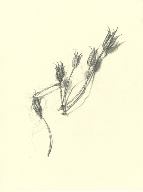 , 'Come Away,' 2014, Resource Art