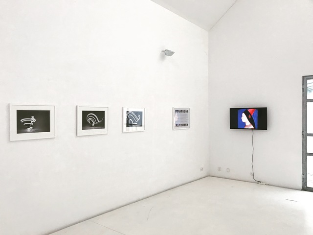, 'IMMIGRANTS, US Survey female excerpts,' 2017, Brigitte March International Contemporary Art
