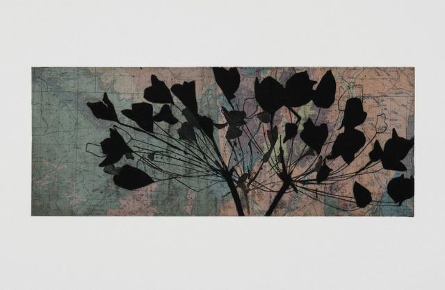 Susan Davidoff, 'New Mexico Geology / Allium', 2018, Octavia Art Gallery