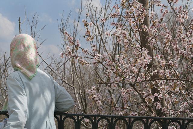 , 'Iranian Film Stills #65,' 2015, Galerie nächst St. Stephan Rosemarie Schwarzwälder