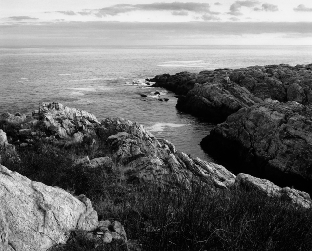 , 'North Head Ledges, Appledore Island,' 2015, Pucker Gallery