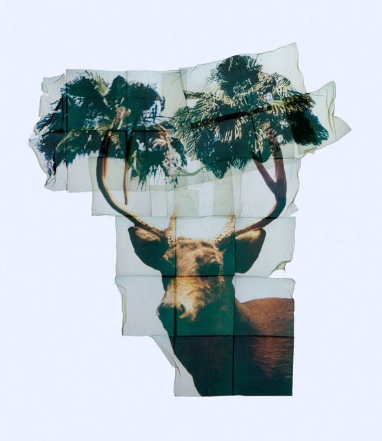 , 'Hubertus (Deer with Palms II),' 2017, The Public House of Art
