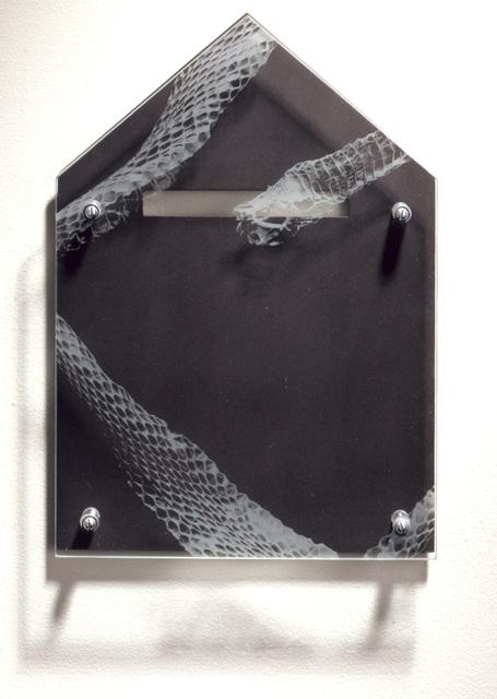 , 'Ghost House/Armor Study: Snakeskin #2 ,' 1995, David Richard Gallery