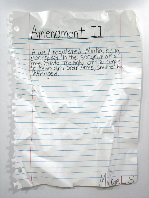 , 'Amendment II,' 2008, Samuel Owen Gallery