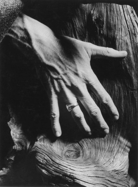 Minor White, 'Untitled', c. 1964, Center for Photography at Woodstock Benefit Auction
