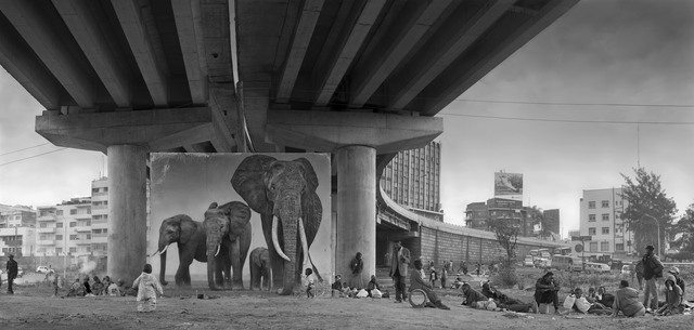Nick Brandt, 'Underpass with Elephants (Lean Back, Your Life is On Track)', 2015, Edwynn Houk Gallery