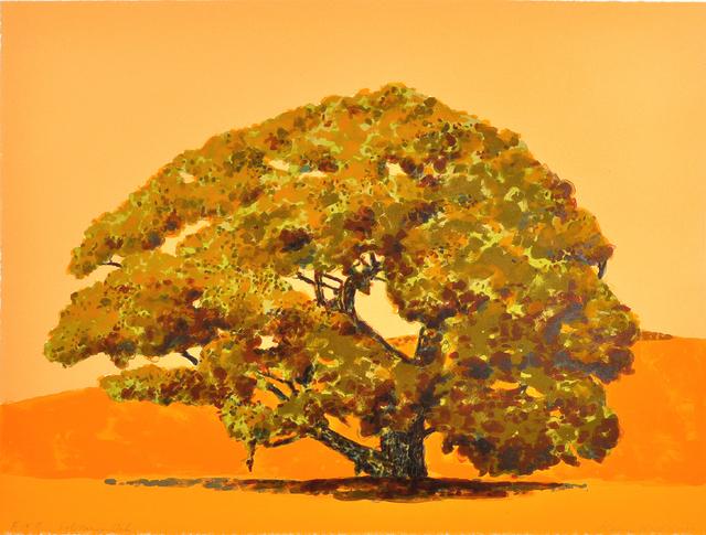 Susan Hall, 'Solitary Oak', 2012, Print, Color lithograph, Shark's Ink.