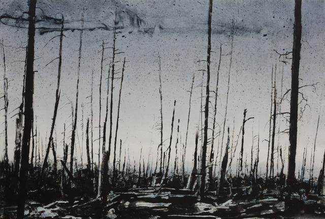 , 'Forest Fire,' 2017, BASTIAN