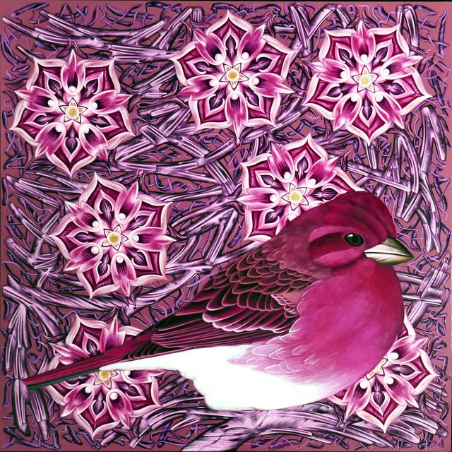 , 'Exult #47 Purple Finch,' 2019, Springfield Art Association