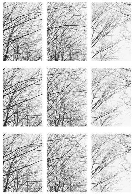 , 'Winter,' 2013, Graphicstudio USF