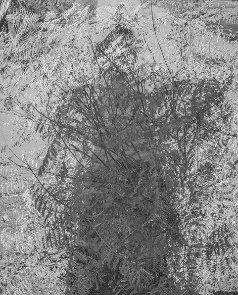 Joseph Podlesnik, 'Where-Nothing-But-the-Sun', 2018, William Matthews Studio