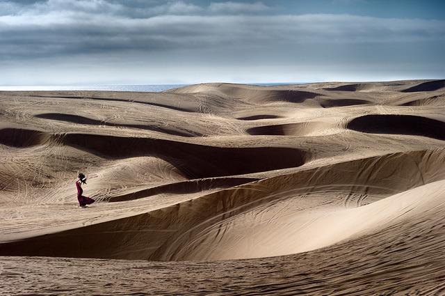 David Drebin, 'Dune Love', 2015, Isabella Garrucho Fine Art