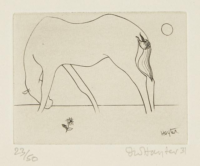 Stanley William Hayter, 'Small Horse [Black & Moorhead 45]', 1931, Print, Engraving on wove, Roseberys