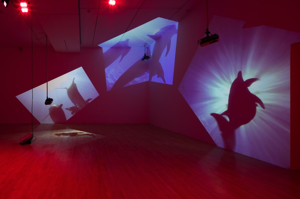 """Installation photograph, """"Diana Theater: The Sympathetic Imagination,"""" Los Angeles County Museum of Art, November 22, 2015 - February 21, 2016. Courtesy of Diana Thater. Photo: Fredrik Nilsen."""
