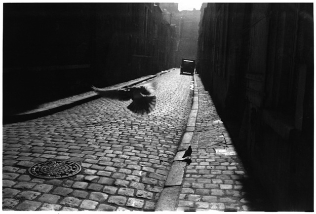 , '3. France. Orleans. (Pigeons in the alley),' 1952, f22 foto space