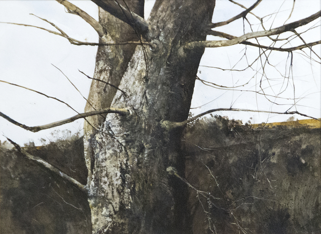 , 'Branches,' 1971, Heather James Fine Art