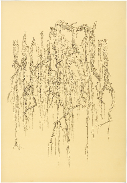 , 'Roots,' 2018, Helsinki Contemporary